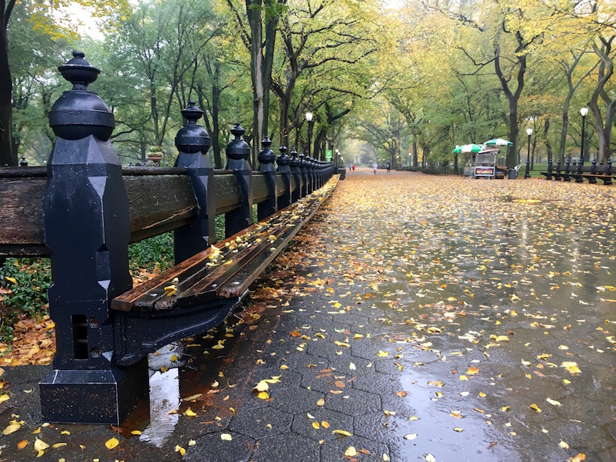 7168_Central_Park_Bench