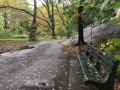 7278_NYC_Central_Park
