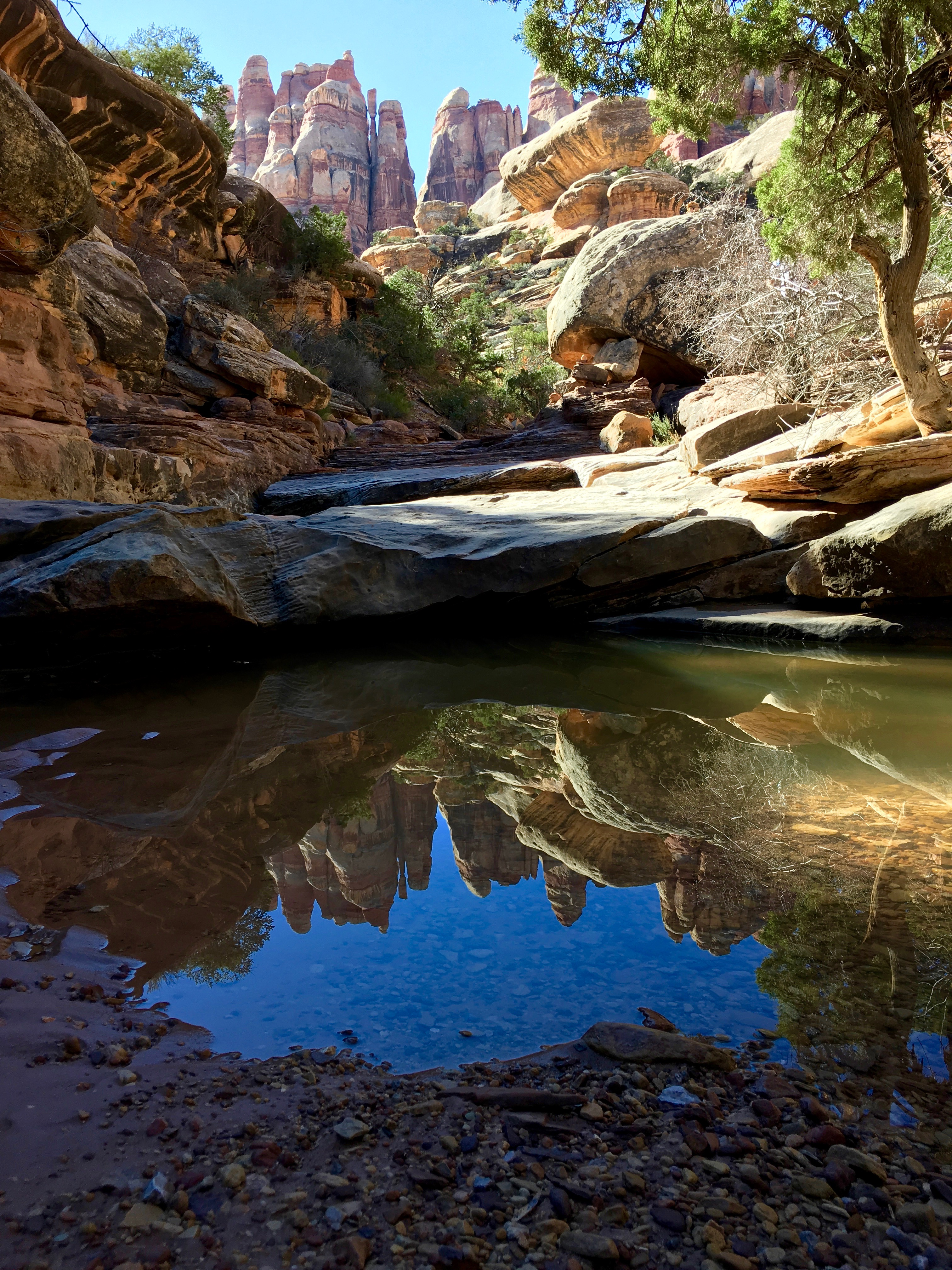 8737_Canyonlands_Forever