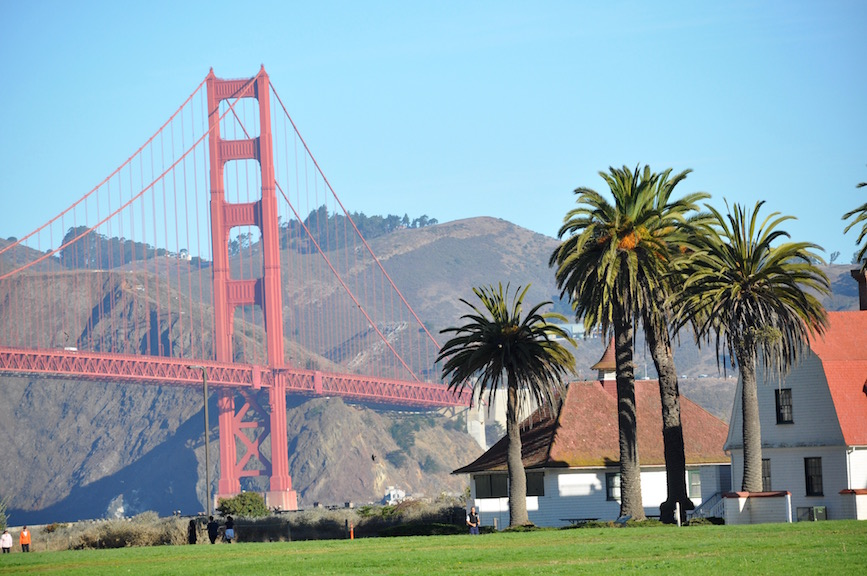 0556_Golden_Gate_Palms