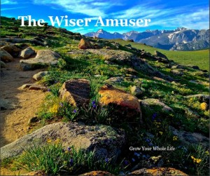 The Wiser Amuser book cover