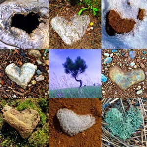 Heart in Nature Collage